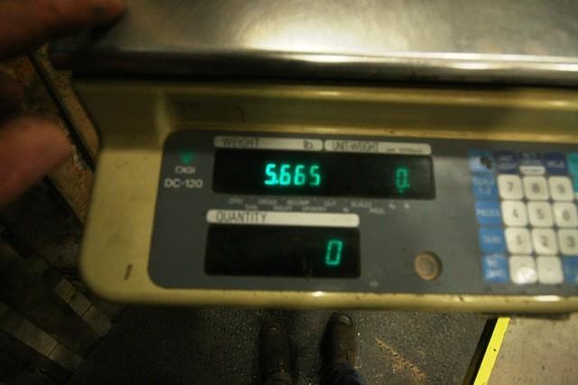 Digi Matex Model SPL4872-10 4' x 6' Scale, 10,000 lbs. Capacity